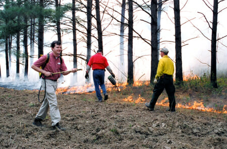 Leadership Tallahassee class tries there hand at prescribed burning at Miss Kate's Foshalee Plantation, 2004.