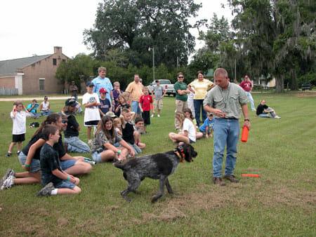 2009 YHFD hunting dog demonstration