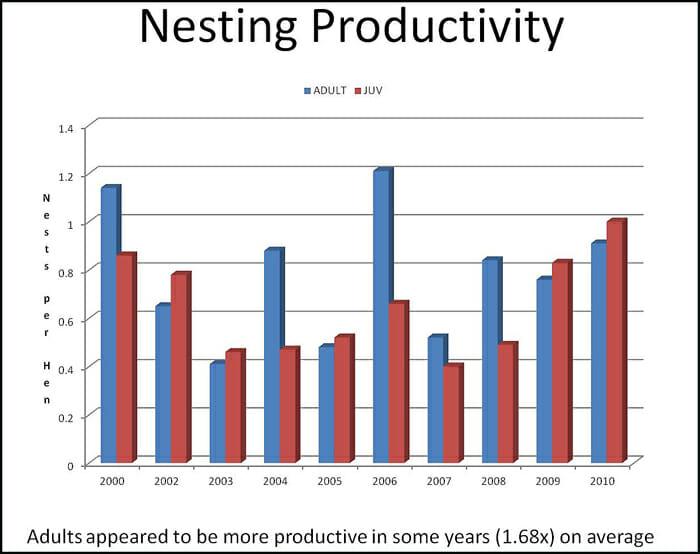 Nesting Productivity graph
