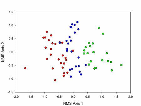 Shortleaf scatter plot