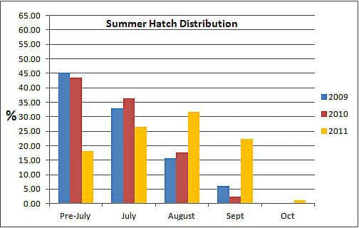 Summer Hatch Distribution