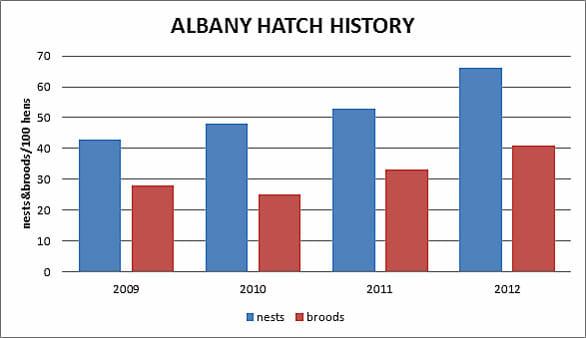 Albany Quail Hatch