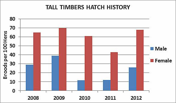 Tall Timbers Quail Hatch