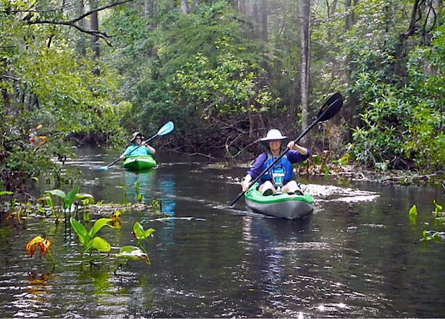 Paddling on the Wacissa River