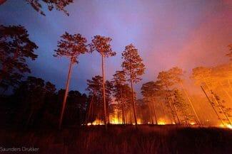 Night Burn of the Wade Tract