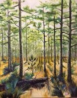 Pines by Jean Hancock