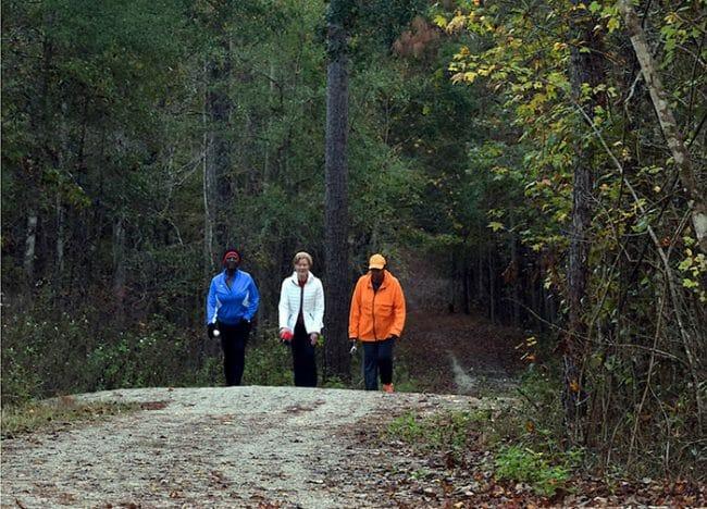 Morning hike at Miccosukee Greenway