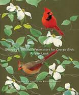 Watercolors for Georgia Birds