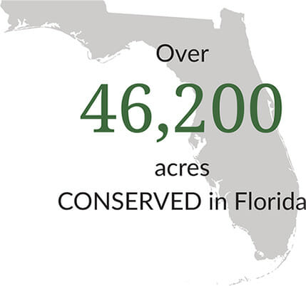 46,200 Acres Conserved in Florida