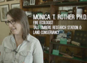 Monica T. Rother Ph.D.