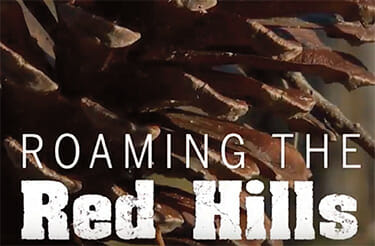 Roaming the Red Hills