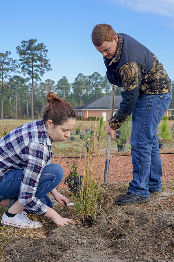 Native grasses are an important part of the site and will provide a fuel source for teaching with prescribed fire.
