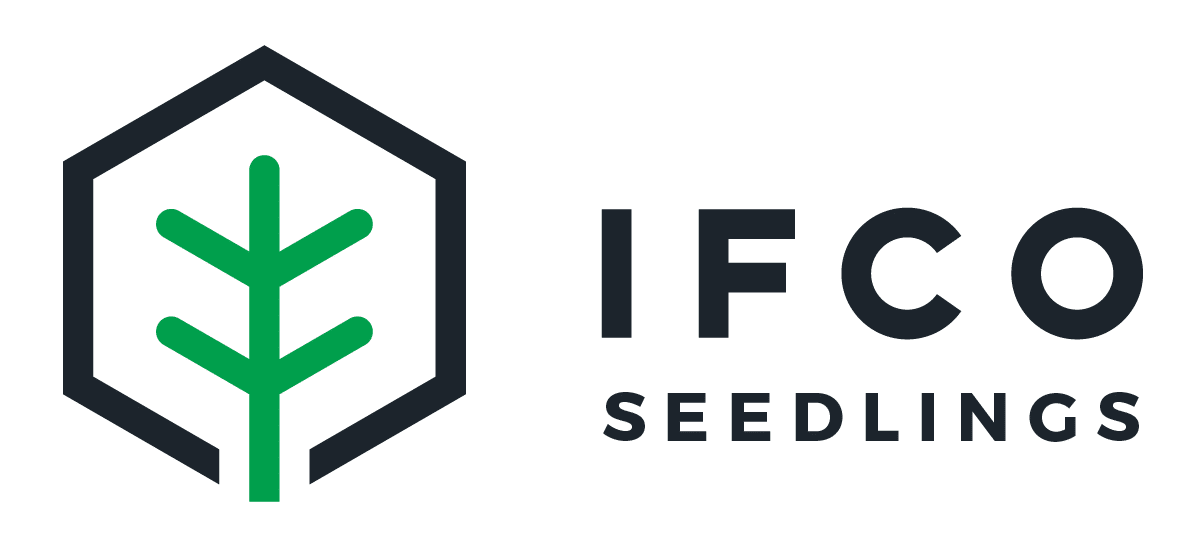 IFCO Seedlings